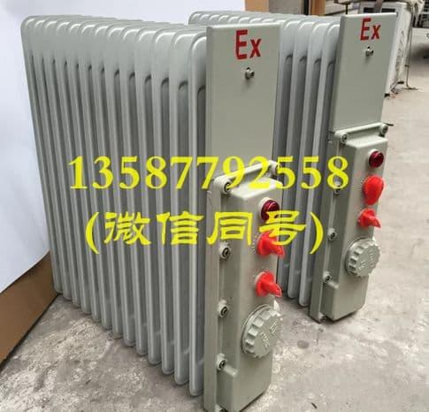 防爆油汀电暖气bdr-2kw/11